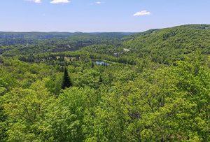 Terrain à vendre la réserve morin-heights